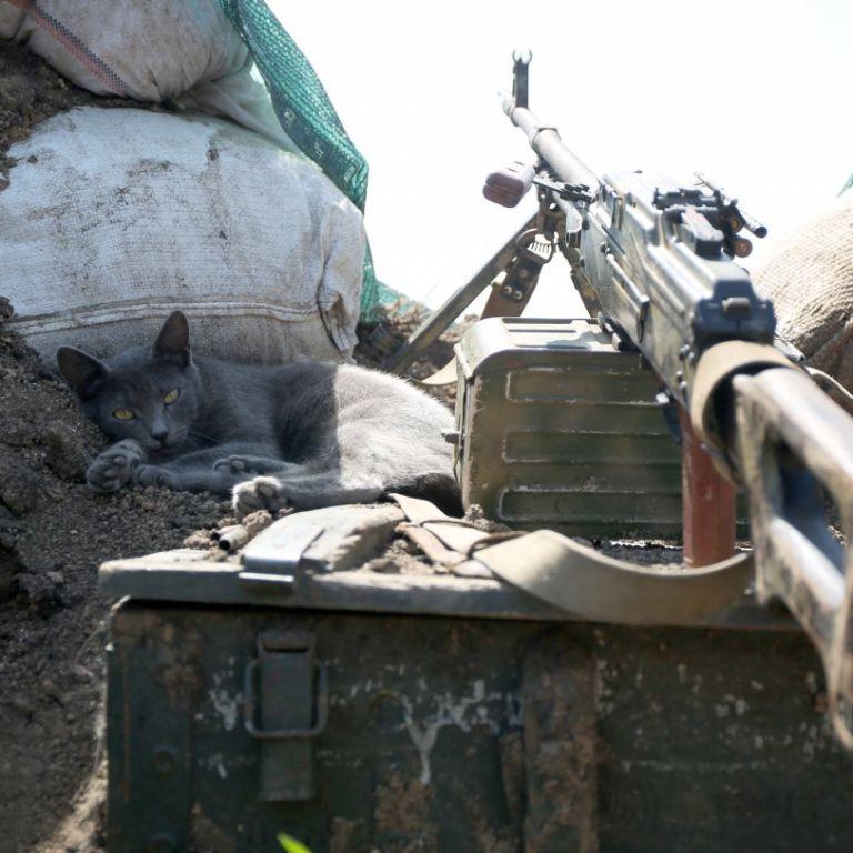 ВСУ рассказали, сколько военных убили боевики за время режима прекращения огня