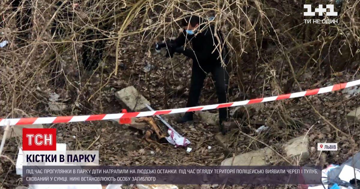 Новини України: у львівському парку діти знайшли людські кістки
