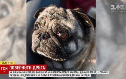 У киевлянки среди белого дня на пляже украли мопса