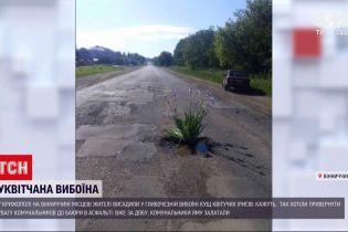 Новини України: жителі Крижополя висадили у глибочезній вибоїні кущ ірисів