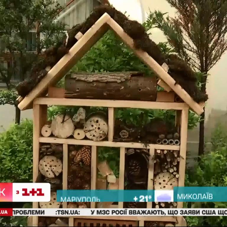 У Львові встановили будиночок для комах: відео