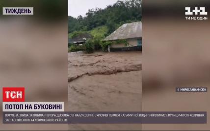 Села превратились в реки: убытки от подтоплений на Буковине оценили в десятки миллионов гривен