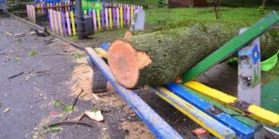 Деревопад в Днепре: сразу несколько стволов упали на детскую площадку
