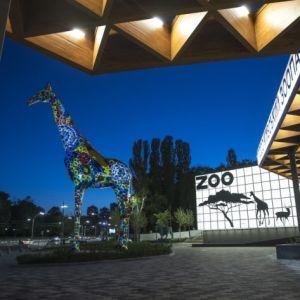 У Києві після реконструкції відкривають зоопарк