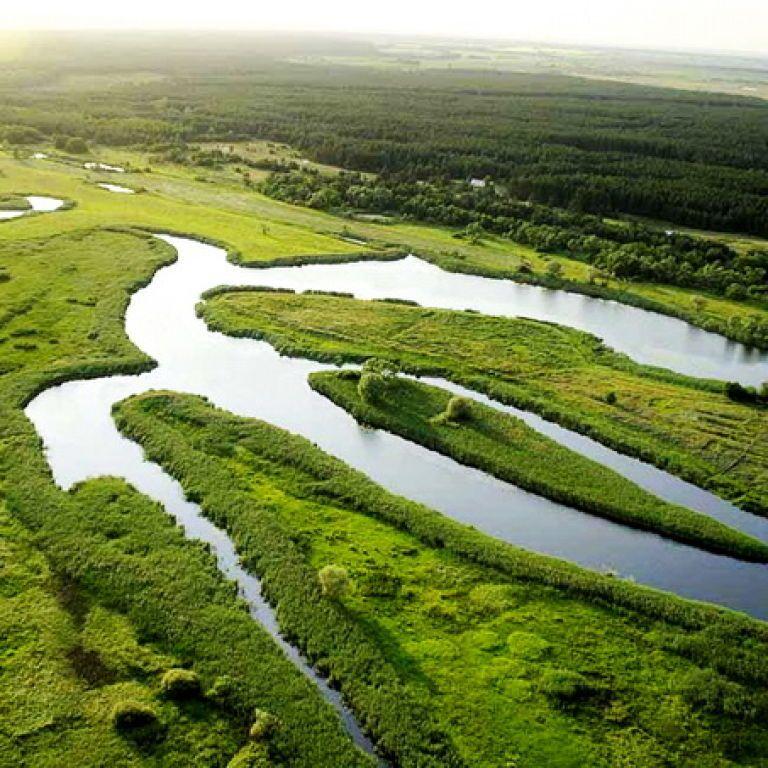 """ГПУ розслідує незаконне виведення з держвласності 200 га земель природного парку """"Гомільшанські ліси"""""""