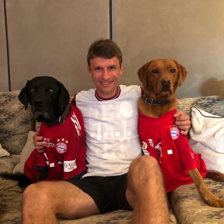 """Нарядил собак в клубные футболки: лучший ассистент """"Баварии"""" показал, как болеет за своих дома"""