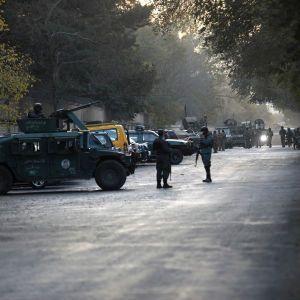 """В США предполагают, что """"Талибан"""" может захватить власть в Афганистане после вывода войск"""