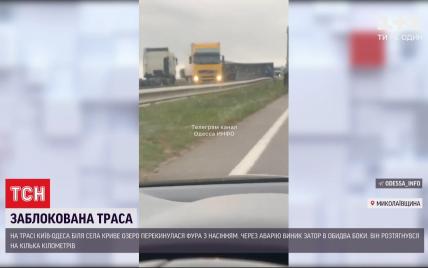 Трассу Киев-Одесса несколько часов блокировали семечки, что высыпались из фуры во время ДТП