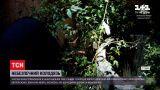 Новости Украины: львовянка провалилась в канализационный люк, когда выгуливала собаку