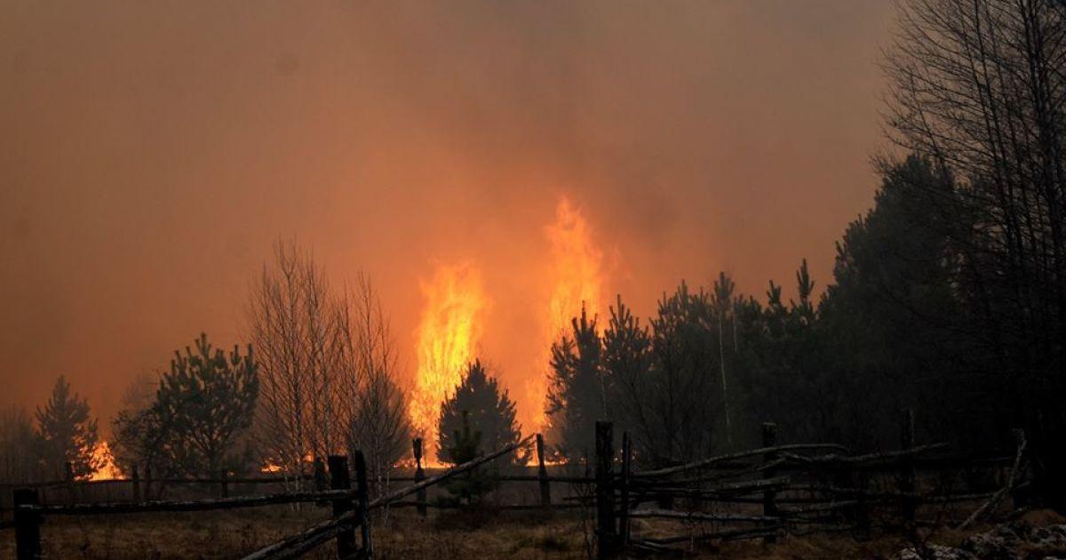 Пожажі в Житомирской области (Фото: Виталий Юшкевич) / ©