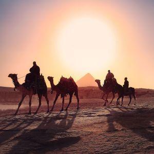 Нужно доплатить: какое новшество ждет туристов в Египте
