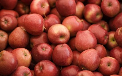 Яблука на сніданок: чотири найкращих рецепти