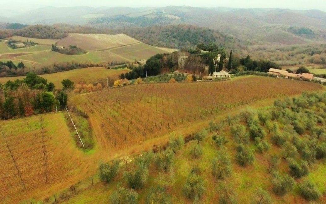 Виноградники в Анапі і Тоскані / © Сайт Олексія Навального