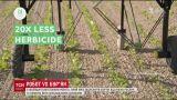 В Швейцарии разработали робота, который борется с сорняками