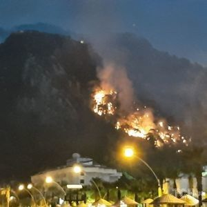 Вогонь, дим ще й землетрус: яка наразі ситуація в Туреччині, де вже п'ятий день вирують лісові пожежі
