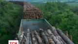 На Луганщине бойцы 24 бригады задержали эшелон со стройматериалами для ЛНР