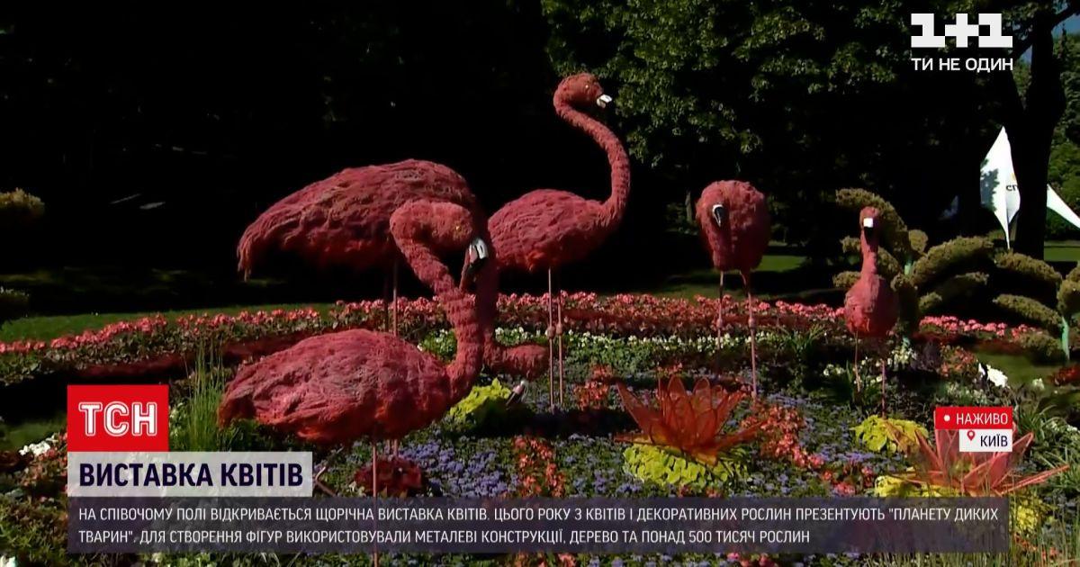 Новини України: у центрі Києві з'явилися дикі тварини аж п'ять метрів у висоту
