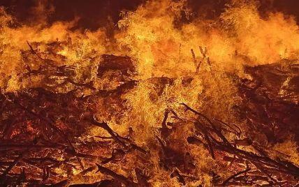 У Росії через суху погоду спалахнули лісові пожежі