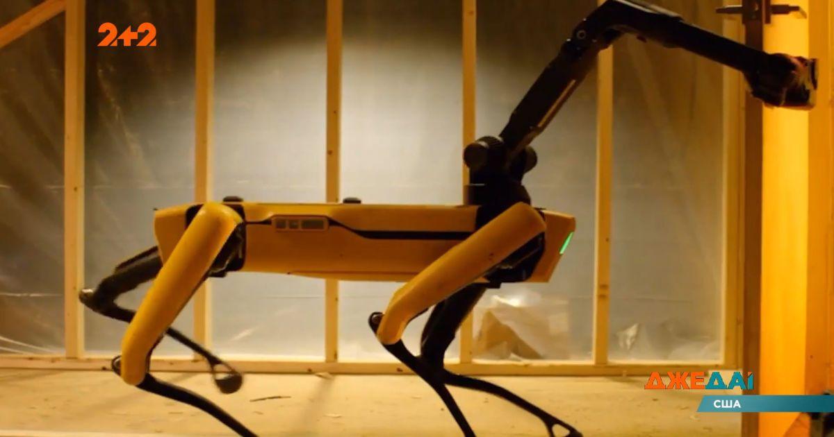 В свободную продажу поступили легендарные робособаки Бостон Дайнамик