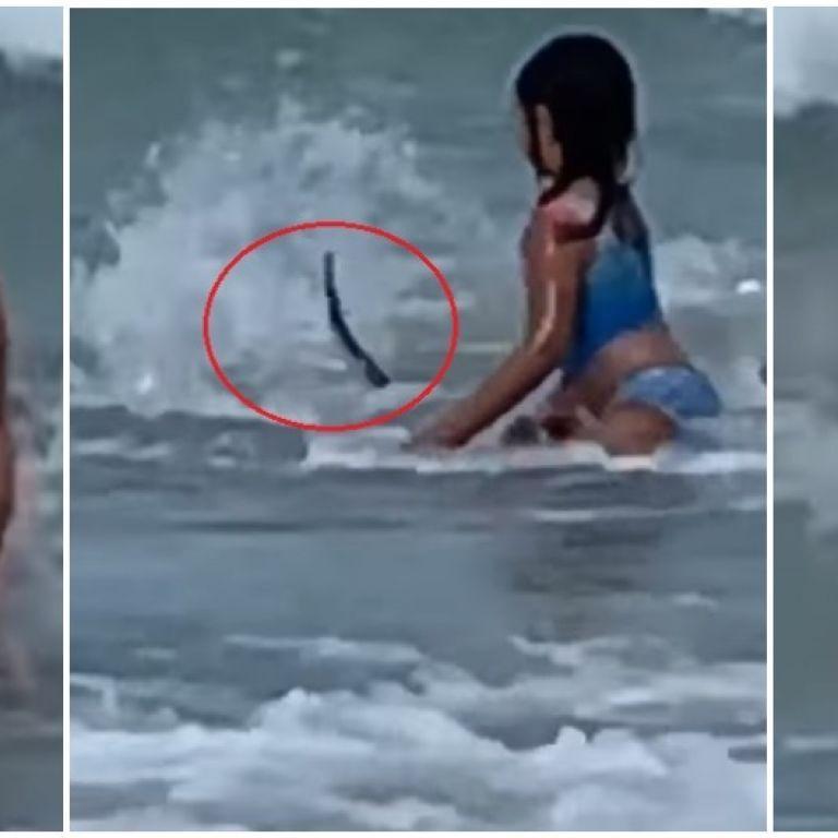 Американка випадково записала відео, як її 6-річна донька рятується від акули