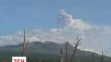 На Камчатці прокинувся найбільший в Євразії вулкан