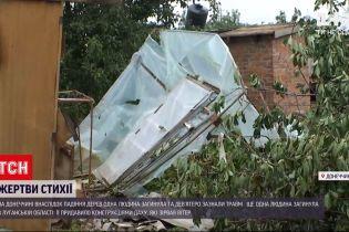 Новости с фронта: жертвы стихии на Донбассе - ураган унес жизни 2 человек