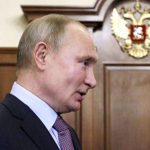 """""""РФ никогда этим не занималась"""": у Путина прокомментировали заявление ЕС о поглощении Донбасса"""