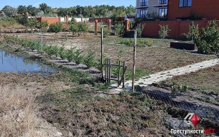 В Николаеве прорвало канализационный коллектор: нечистотами затопило дворы домов