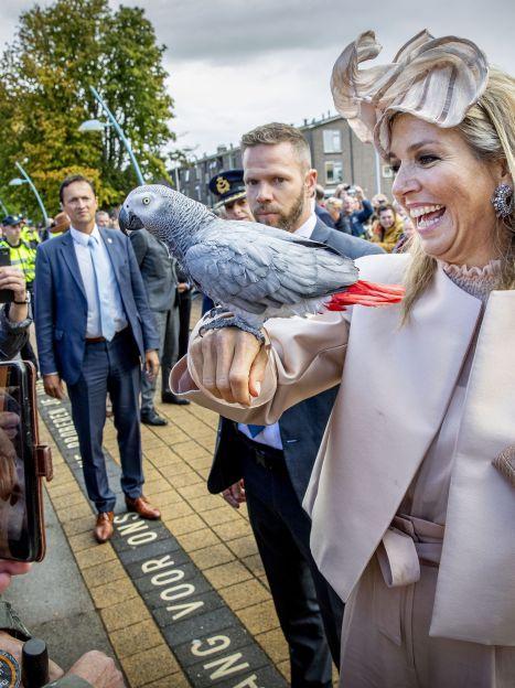 Королева Максима і король Віллем Олександр / © Getty Images