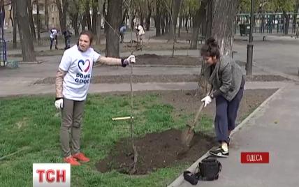 """""""Неделя добрых дел"""" обновила Аллею праведников в Одессе"""