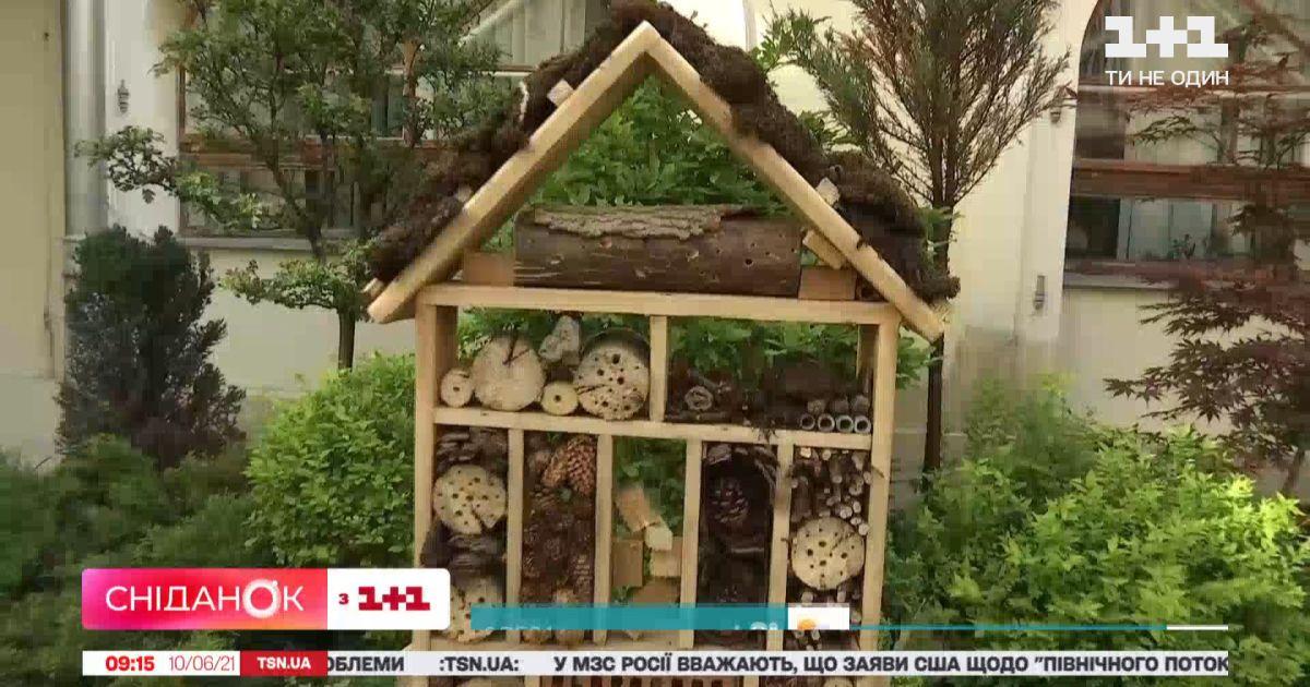 Во Львове накануне установили домик для насекомых