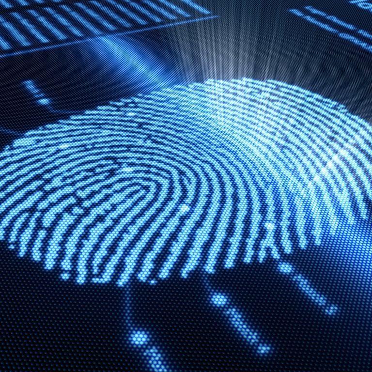 В Испании мужчина разблокировал смартфон с помощью отрезанного пальца