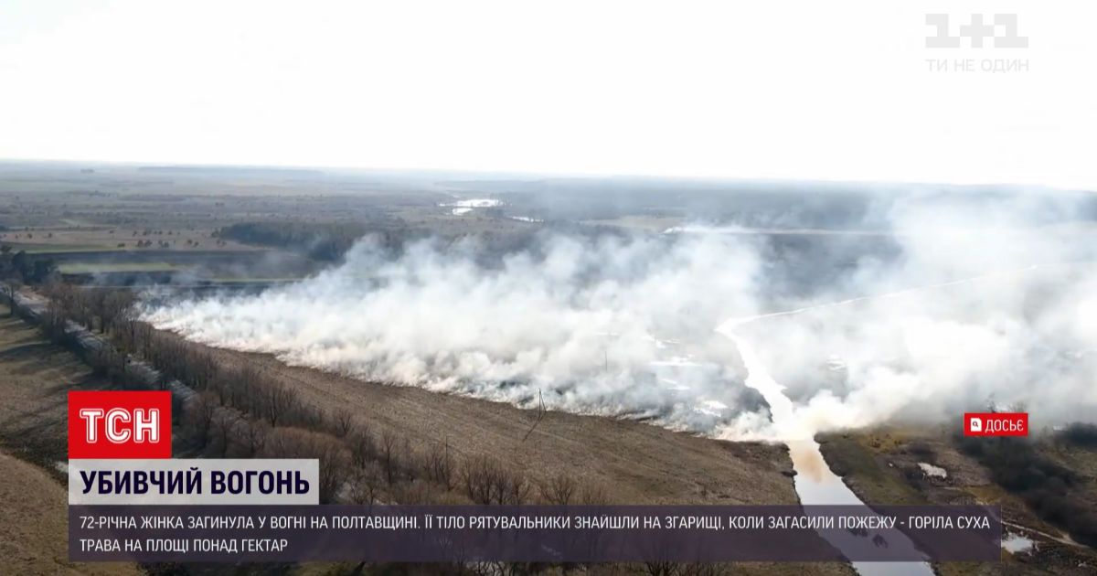 Новини України: у Полтавській області через горіння сухостоїв загинула 72-річна жінка