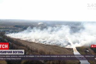 Новости Украины: в Полтавской области из-за горения сухостоев погибла 72-летняя женщина