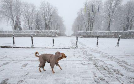 До України йде різке похолодання: прогноз погоди на тиждень, 11-17 січня та Старий Новий рік