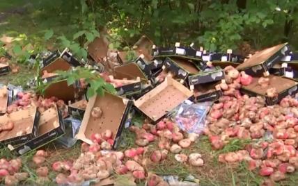 В Киеве в лесу возле парка Партизанской славы торговцы выбросили испорченные фрукты в ящиках: местные шокированы
