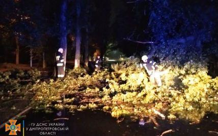 Зруйнований стадіон, повалені дерева і затоплені під'їзди: у Дніпрі негода накоїла лиха (фото, відео)