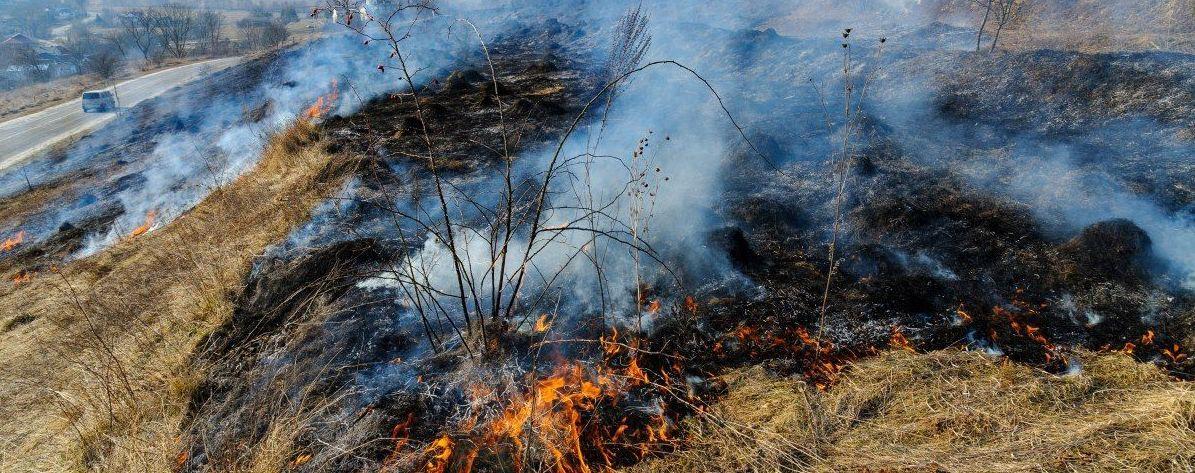 Обпалив обличчя, ноги та тулуб: під Львовом обгорів чоловік під час спалювання сухої трави