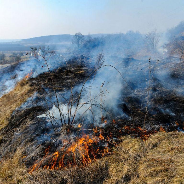 Обжег лицо, ноги и туловище: под Львовом обгорел мужчина при сжигании сухой травы