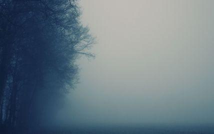 Столица и Киевщина погрузились в густой туман