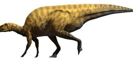 Ученые обнаружили гигантского динозавра, который жил 130 млн лет назад