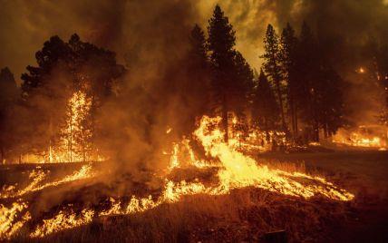 Крупнейший пожар в истории штата: в Калифорнии эвакуируют тысячи людей