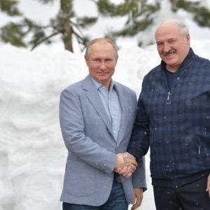 Лукашенко, Путин или Байден: кто из иностранных лидеров пользуется самым большим доверием украинцев