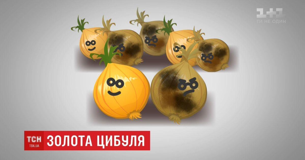 Стоимость лука в Украине побила исторический рекорд