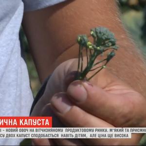 Зверху броколі, знизу спаржа:продуктовий ринок України завойовує новий овоч - броколіні