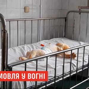 3-летний брат поджег одеяло: в Ровенской области 8-месячный младенец получил тяжелые ожоги