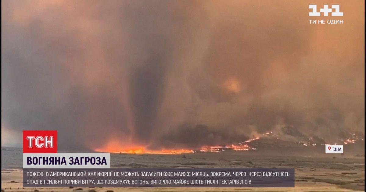 Вогонь у Каліфорнії знищив майже 6 тисяч гектарів лісу