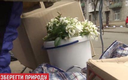 Дефіцит на заборонені квіти: великі штрафи налякали продавців пролісків 8 березня