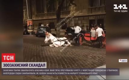 В Одесі знесилений кінь, що тягнув карету, впав посеред міста: перехожі ледь не вчинили самосуд над власником