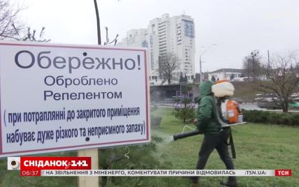 В Киеве придумали действенный способ защитить елки от срезания: видео